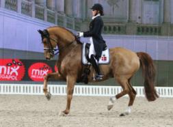 Cathrine Dufour <br><span>Dressage<i>DK</i></span>