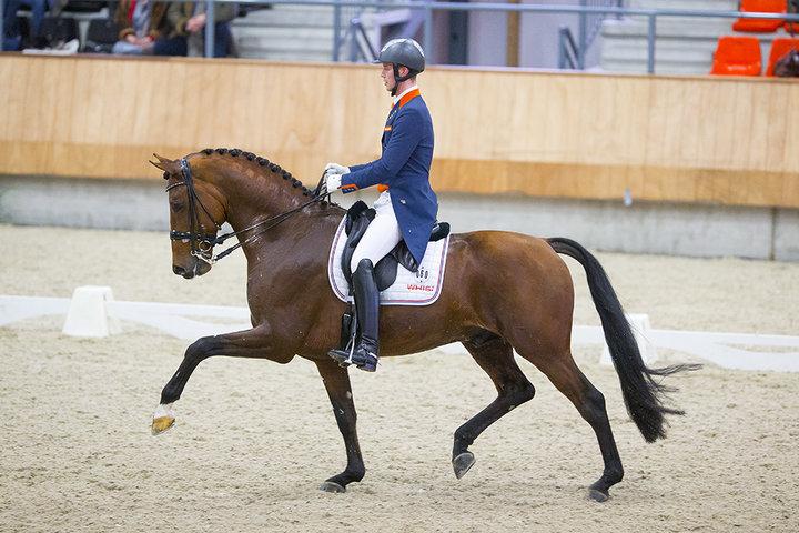 Diederik van Silfhout   Dressage NL