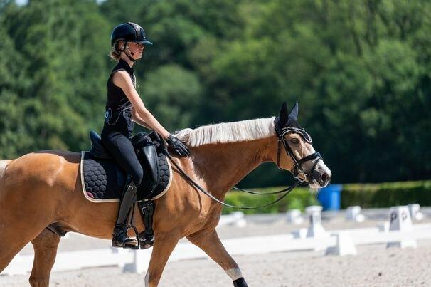 Laura Hendriks   Jumping NL