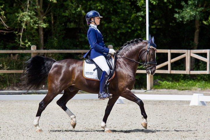 Jill Kempes   Dressage NL
